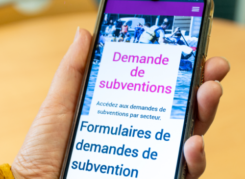 Demandes de subvention 2020